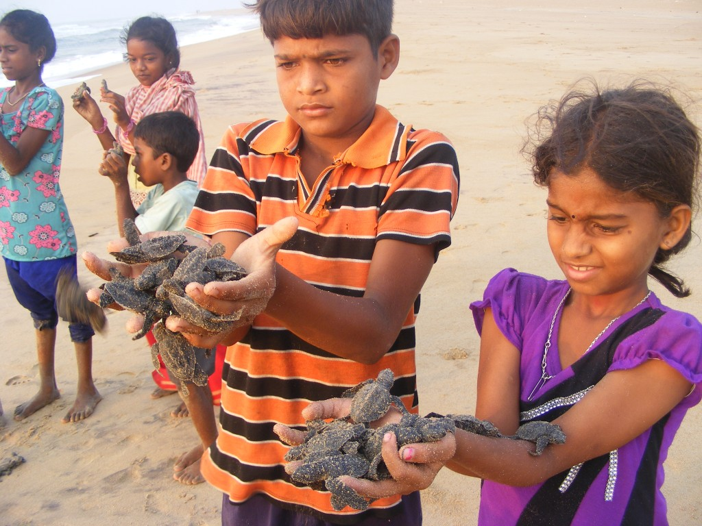 Odisha, India. Why Do Communities Conserve? Lessons from Samudram Women's Federation (India)