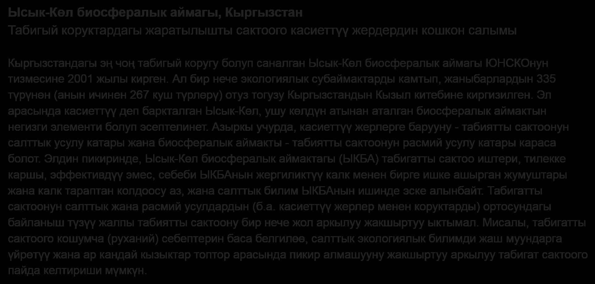 Kyrgyz language abstract